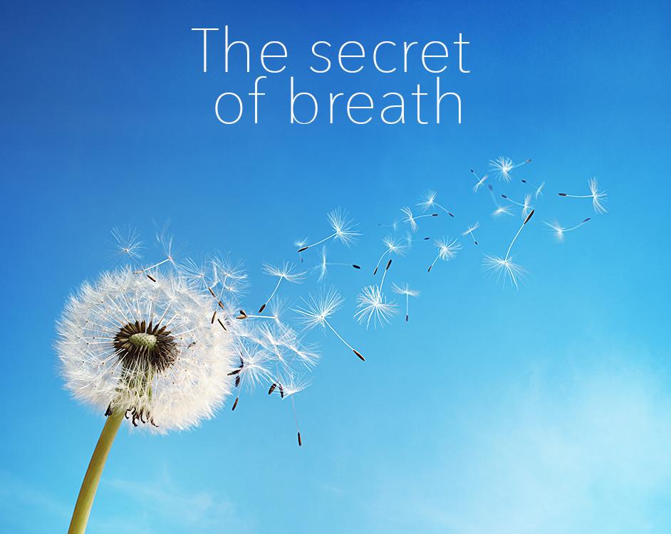 3-the-secret-of-breath_en